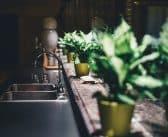Comment faire un jardin d'intérieur soi-même ?
