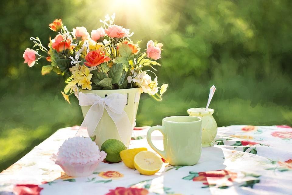 5 conseils pratiques pour avoir un beau jardin
