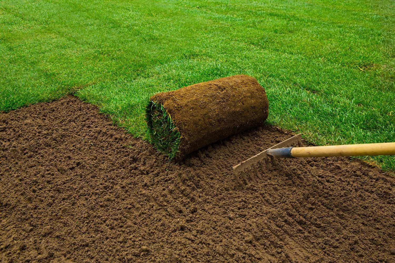 tasser pelouse